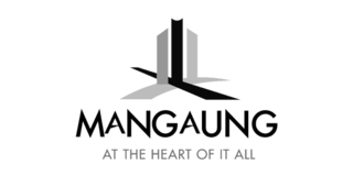 mangaung municipality software development synapsis